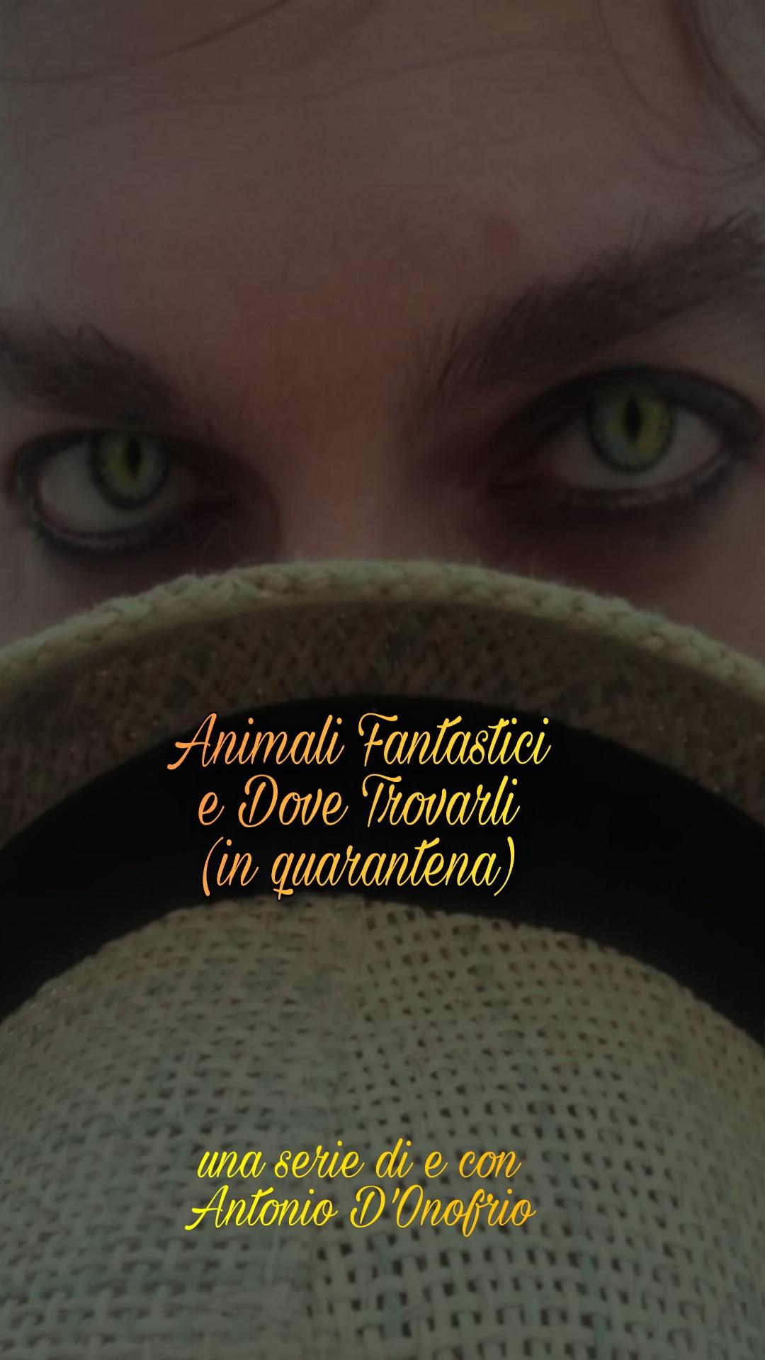 Locandina Animali Fantastici per Vertical Movie Festival